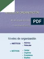 30 Niveles de Organización