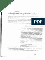 Despido Disciplinario en El Peru - Jorge Toyama Miyagusuku
