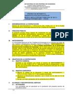 TDR ejecución.docx