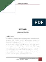 monografia hidrocarburos