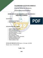 Seminario de Aminoglucosidos.doc