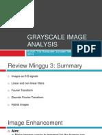 2014 Visikom 04 Grayscale Image Analysis (1)