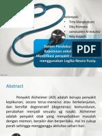 Neurofuzzy Alzheimer