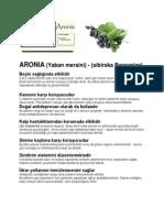 ARONIA (Yaban Mersini) - (Sibirska Borovnica)