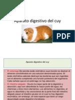 Aparato Digestivo Del Cuy