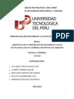 PROGRAMAS DE SEGURIDAD Y SALUD OCUPACIONAL