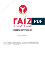 Gestion de Proyectos Financiera Raiz