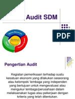 Audit-SDM