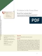 Evolution in the Genus Homo