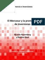 El MERCOSUR y La Promoción de Inversiones