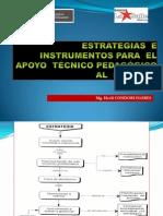 Estrategias e Instrumentos Para El Apoyo Técnico Pedagógico