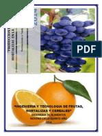 Produccion de Frutas y Hortalizas en La Region Ica (Informe Final)