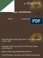 arthropoda Presentation2.ppt