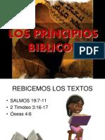 Los Principios Biblicos