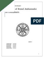 CB Final Report Group 5 Brand Ambassadors