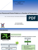 Fluorescence Emission Properties of S-Layer Enhanced Green Fluorescent Fusion Protein as a Function of Temperature, pH Conditions, and Guanidine Hydrochloride Concentration