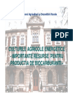 Culturi-agricole-energetice.pdf