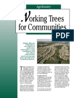 Working Trees