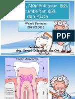 Anatomi Gigi Wendy