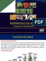 Portafolio Ppt Maiz