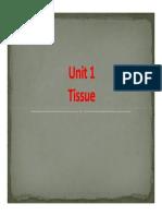 Unit 1- Tissue