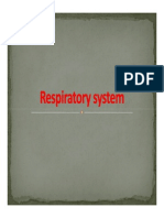 Unit 2 - Respiratory System