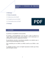 UNIDAD 12-próstata