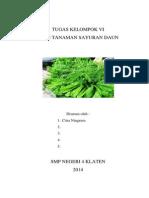 jenis tanaman sayuran daun