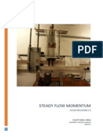 Steady Flow Momentum