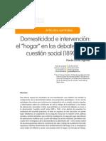 Domesticidad e Intervencion
