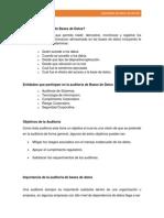 Resumen Auditoria de Bases de Datos