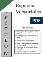 Cálculo Vectorial.pdf