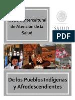 Modelo Pueblos Indigenas