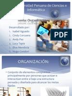 UPCI_ORGANIZACION