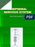Peripheral Nervous System (Kuliah Anvet i)