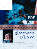 Shamans of Islam
