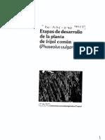 etapas de desarrollo de frijol.pdf