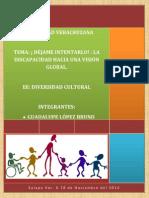 Diversidad Cultural- Inclusión Trabajo Final