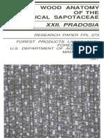 Wood Anatomy of the Neotropical Sapotaceae Xxii Pradosia