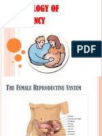 Physiology of Pregnancy Yang 2003