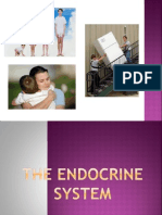 Parts and Functions of Endocrine