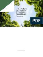 The Future Climate of Amazonia Report
