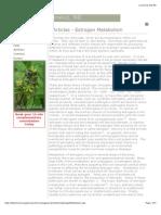 Article - Estrogen Metabolism