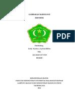 Referat Gambaran Radiologi Sinusitis