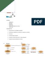 Citoquinas y Quimiocinas