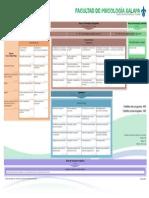 20121104 Mapa Curricular Psicologia UV