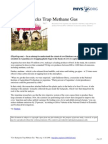 Cow Backpacks Trap Methane Gas
