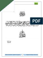 rapportstagefinaltransit-121118140133-phpapp02