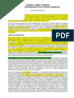MATERIA, ForMA Y FUNCIÓN La Obra de Alula Baldassarini Como Referente Marplatense