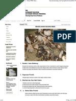 Pengolahan Kacang Mede, Pemetaan Ttg - Ditjen Pmd, Kementerian Dalam Negeri Ri